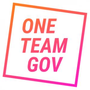 OneTeamGov logo